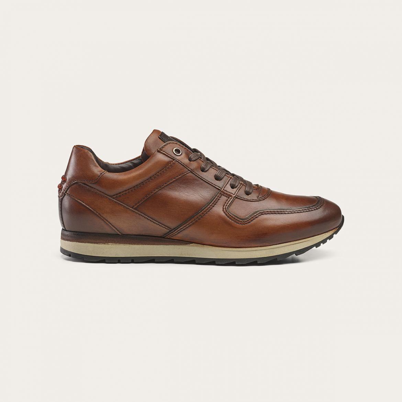 Greve Sneaker Fury Mogano Corsaro  7243.88-002
