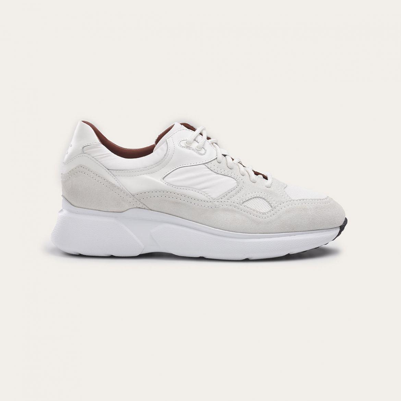 Greve Sneaker Ryan Bianco Talca  7257.04