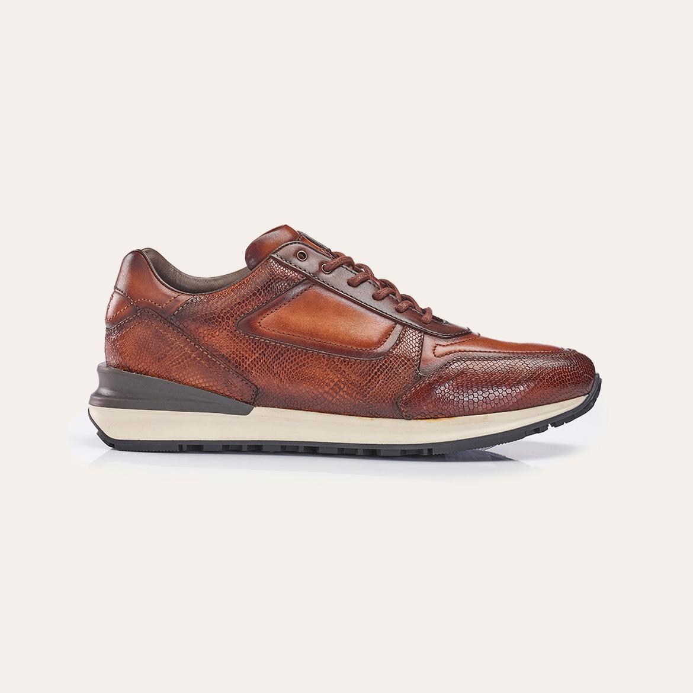 Greve Sneaker Podium Rust Pyton  7258.10